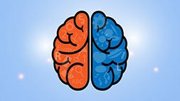 Master Your ADHD Brain! Udemy Coupon & Review