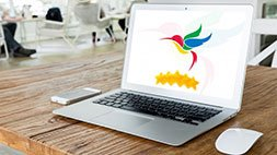 Beat Google HummingBird And Reclaim Your Google Ranking Udemy Coupon & Review