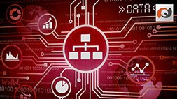 Oracle PL/SQL Fundamentals vol. I & II Udemy Coupon & Review