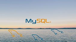 MySQL Database Training for Beginners Udemy Coupon & Review