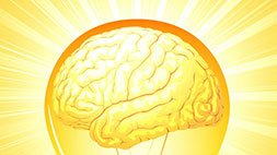 The Neuroscience of Reframing & How to Do It Udemy Coupon & Review