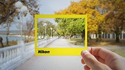 Beginner Nikon Digital SLR (DSLR) Photography Udemy Coupon & Review