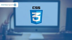 CSS Development (with CSS3!) Udemy Coupon & Review