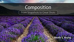Composition: From Snapshots to Great Shots Udemy Coupon & Review