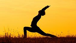Posturecise - How To Create A Healthy Posture Habit For Life Udemy Coupon & Review