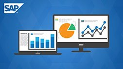 SAP Project 101 - A Step-by-step SAP Implementation Guide Udemy Coupon & Review