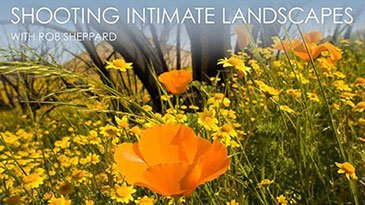 Shooting Intimate Landscapes Craftsy Review