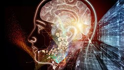 The Mind Readers' Guide To Metaphor Udemy Coupon & Review