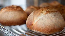 How to Bake Real Artisan Bread Udemy Coupon & Review