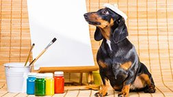 Photoshop Dog Retouching - All Tips & Tricks Covered Udemy Coupon & Review